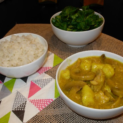 petite-photo-blanquette-thon-curry